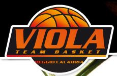 Team Basket Viola