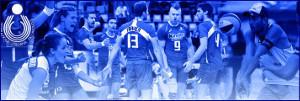 FIP -Volley