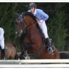 bisignano- cavallo