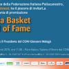 Hall of fame basket