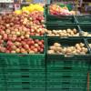 furtta e verdura copia