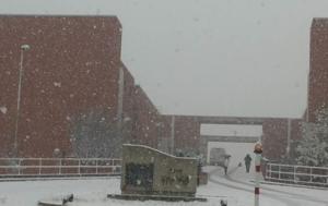 unical neve