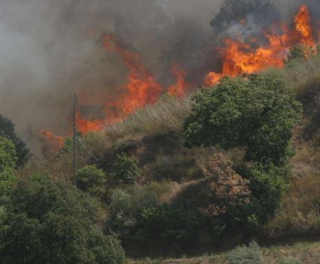 incendio Sicilia