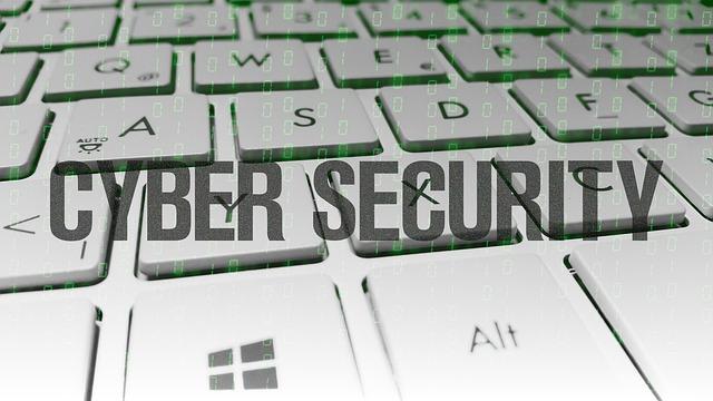 Usa: cyber-sicurezza, attacco hacker una seria minaccia