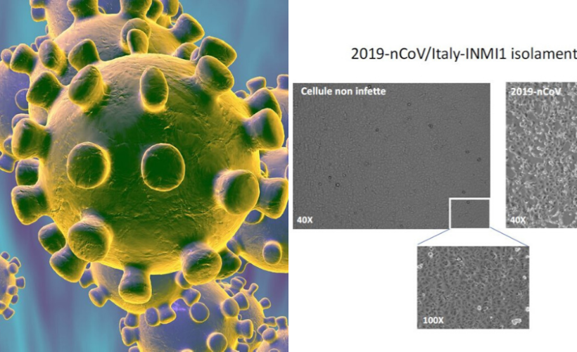 Coronavirus isolato dai virologi dello Spallanzani